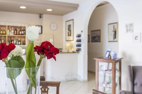 Hotel Vera Cesenatico Gallery dim2407